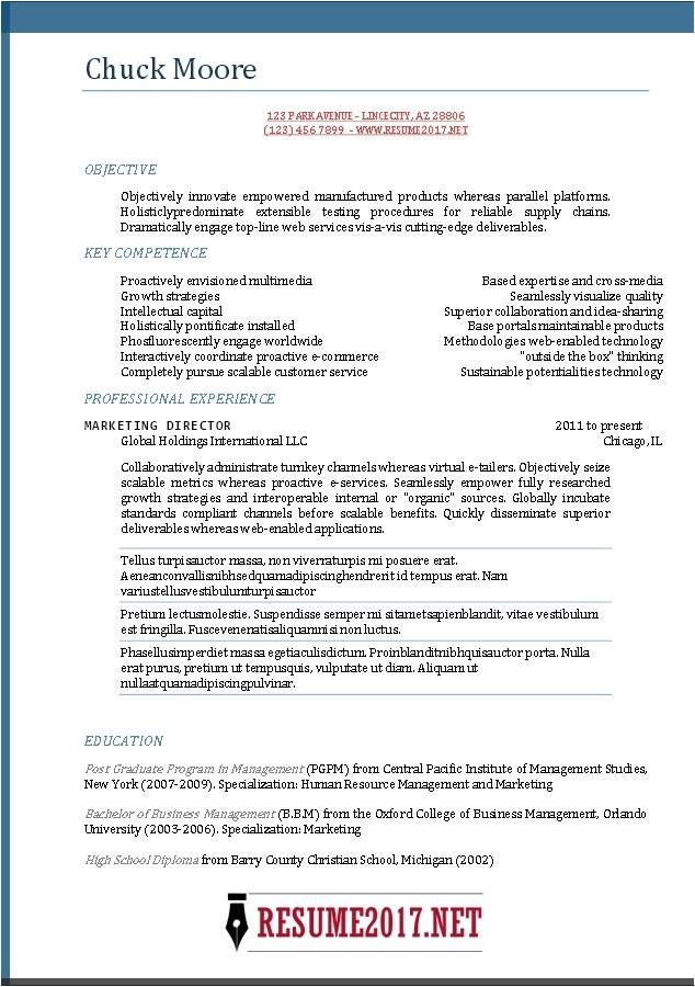 best resume template 2017