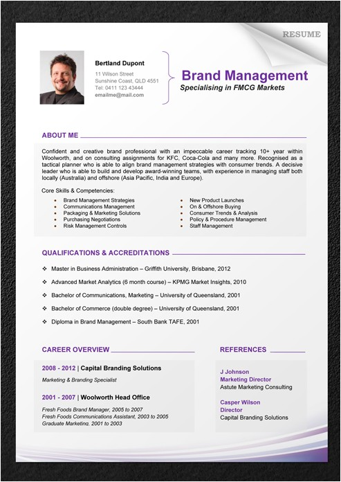 A Professional Resume Template Professional Resume Template Download Schedule Template Free