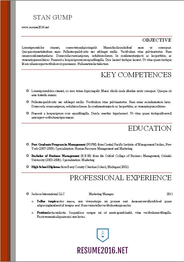 A Professional Resume Template Word Resume Templates 2016