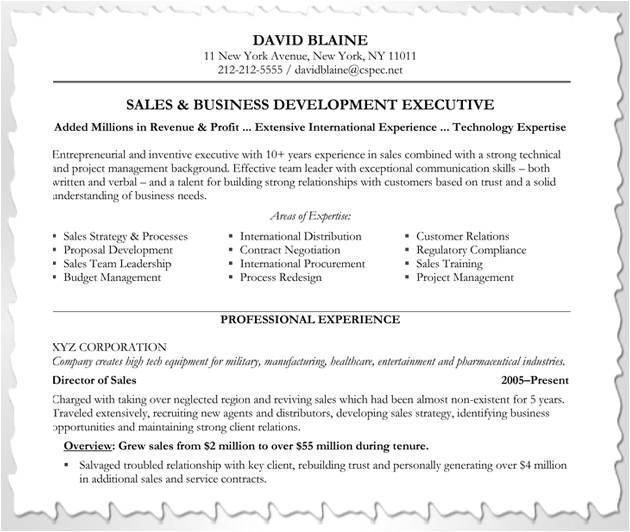 Area Of Expertise Resume Sample How to Customize Your Resume Blue Sky Resumes Blog