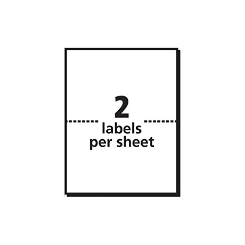 Avery Half Sheet Labels Template Avery Shipping Labels with Trueblock Technology 3 X 4
