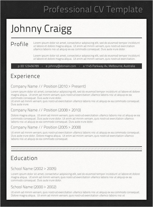 Best Professional Resume Templates Best Professional Resume Templates