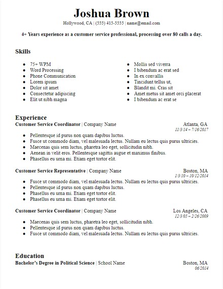 Bold Resume Template Google Docs Bold Professional Summary Resume Template