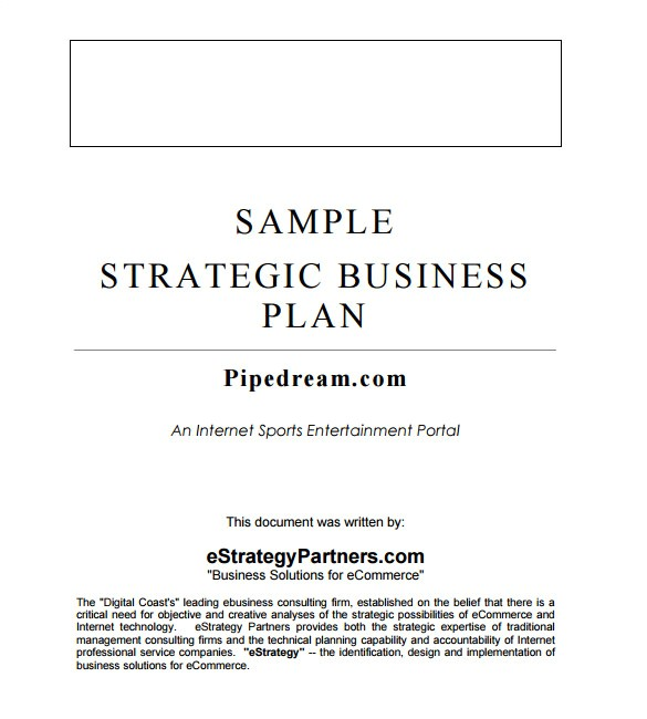Business Plan Strategy Template Strategic Business Plan Template 9 Free Word Documents
