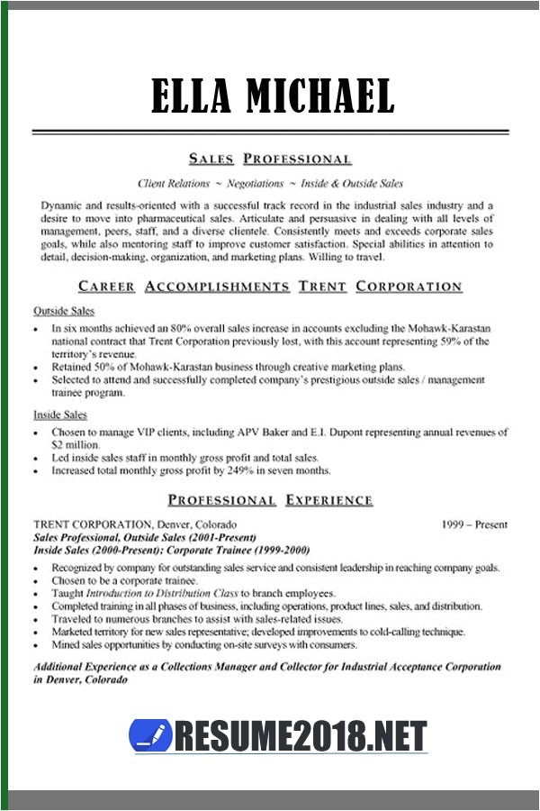 Combination Resume Template 2018 Resume Template Guide for 2018 Gt Latest Updates Resume 2018