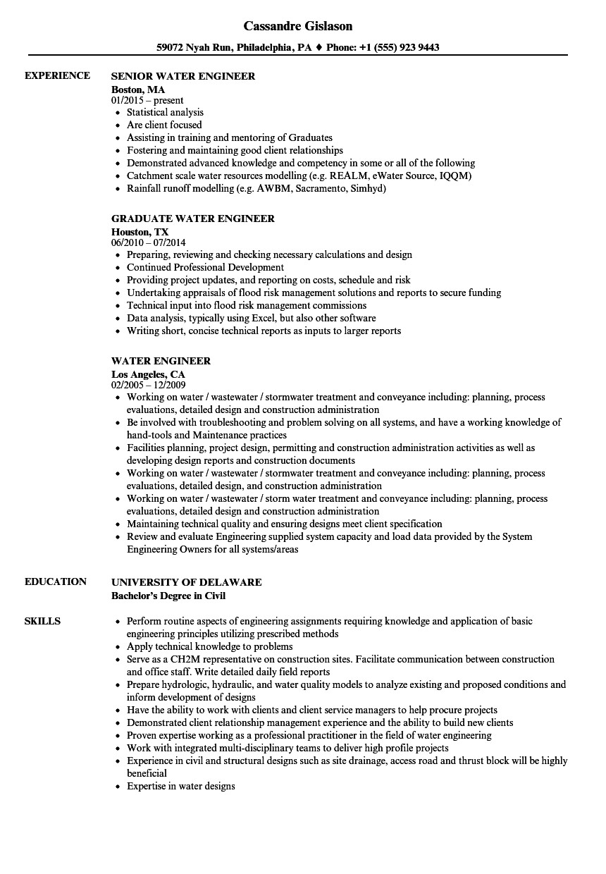Concise Resume Template Nice Short Concise Resume Sample Ensign Example Resume