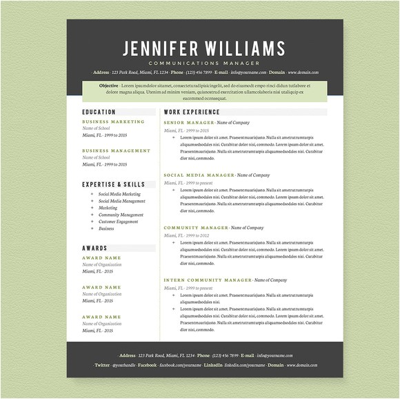 162645 professional resume template pkg