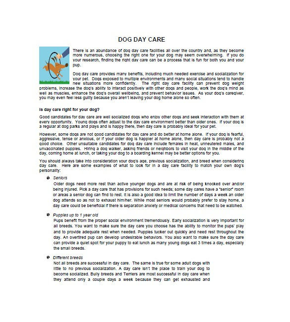 Dog Daycare Business Plan Template Daycare Business Plan Template 12 Free Word Excel Pdf