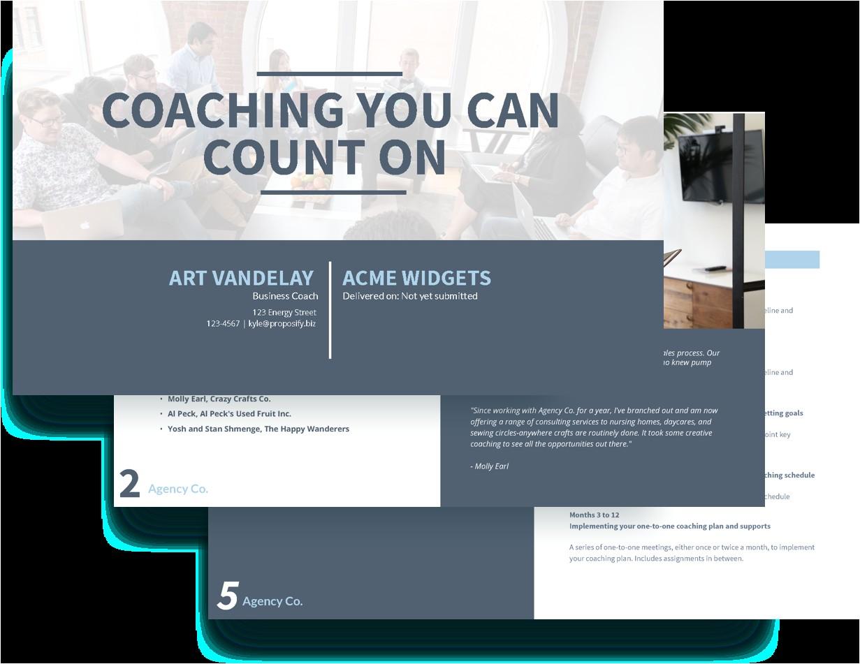 Executive Coaching Proposal Template Executive Coaching Proposal Template Free Sample