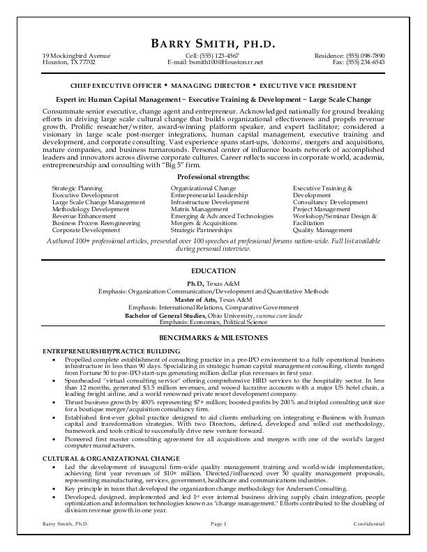 Executive Resume Template Free Executive Resume Template E Commerce