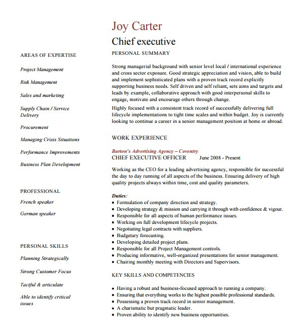 Executive Style Resume Template 14 Executive Resume Templates Pdf Doc Free Premium