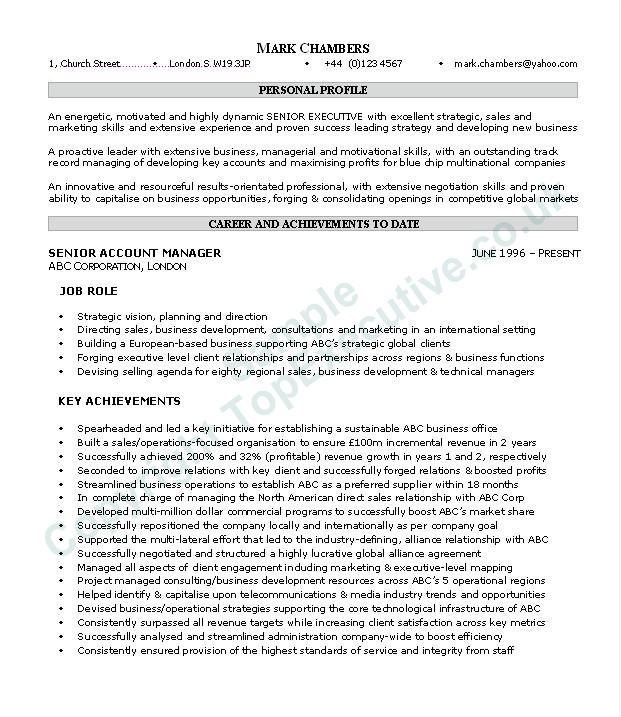 Executive Summary Resume Samples Resume Executive Summary Example Resume Badak