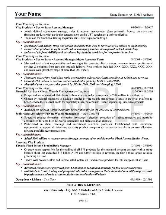 sample resume executive summary