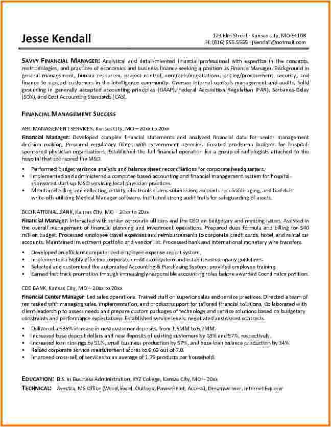 Finance Manager Resume Template 10 Finance Resume Examples Financial Statement form