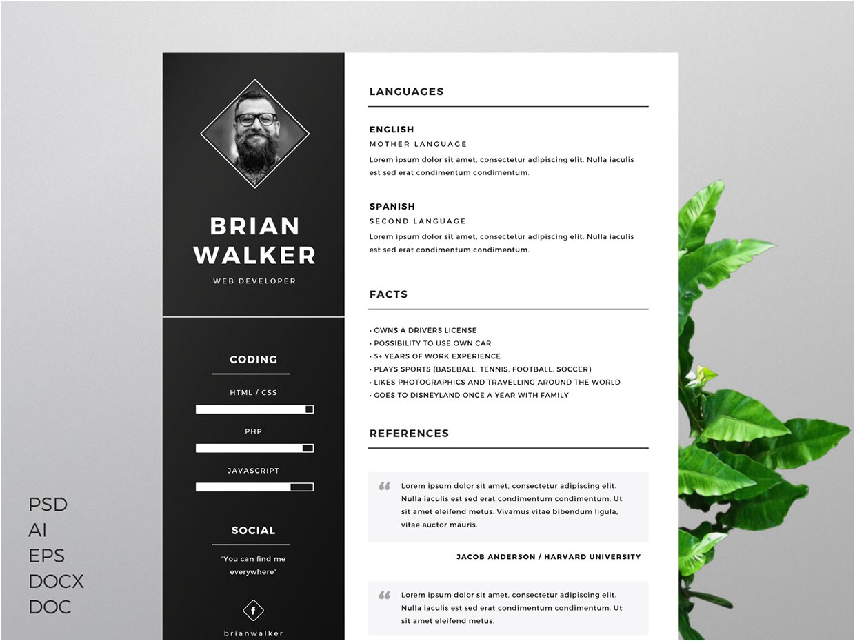 well designed resume examples inspiration