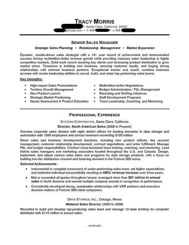 Free Sales Resume Templates Sales Manager Resume Sample Professional Resume Examples
