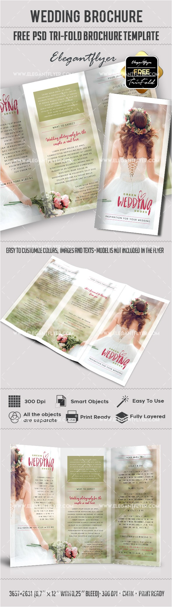 Free Tri Fold Wedding Brochure Templates Wedding Free Tri Fold Psd Brochure Template by