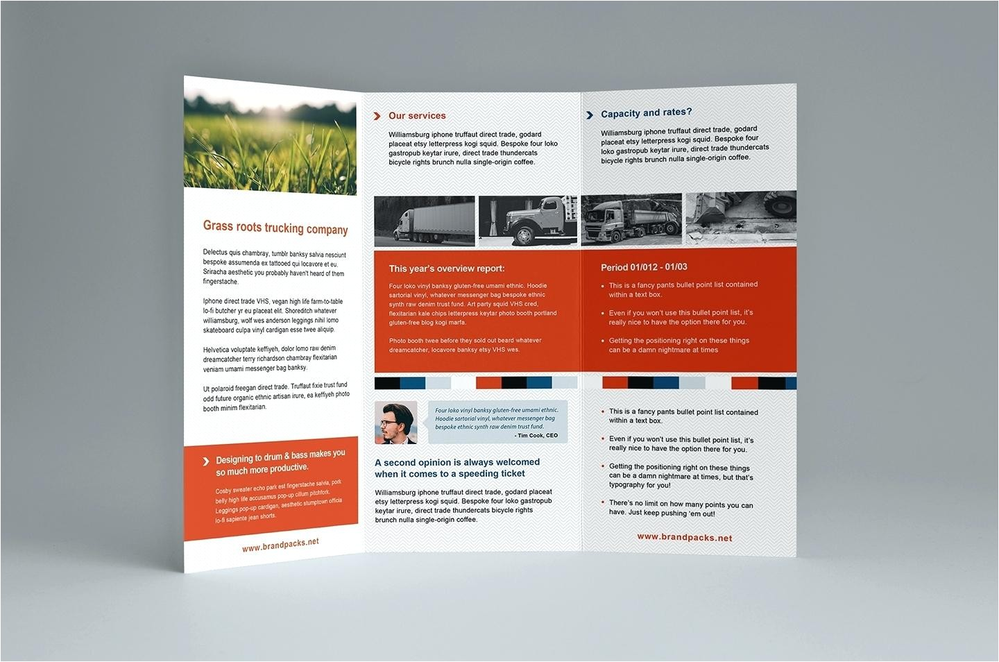 Indesign Tri Fold Brochure Templates Free Download 3 Fold Brochure Template Indesign