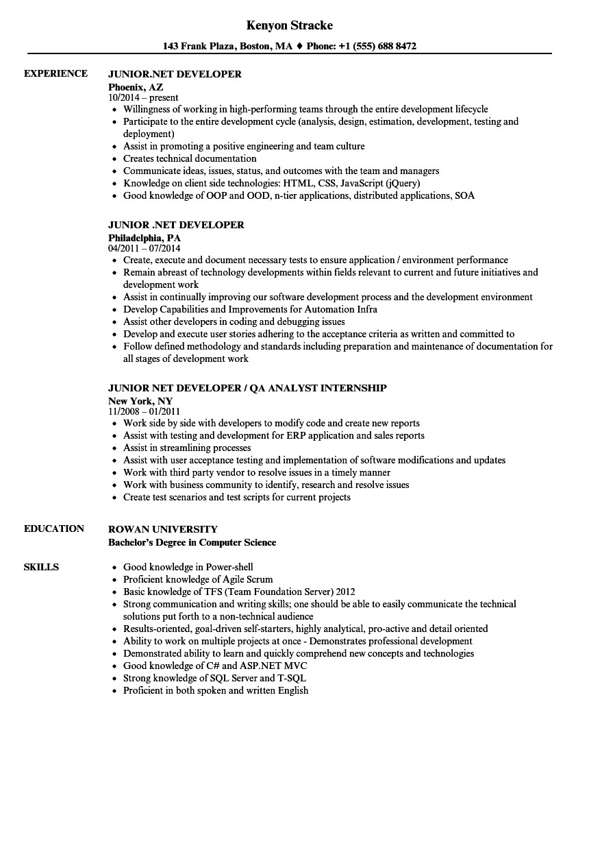 junior net developer resume sample