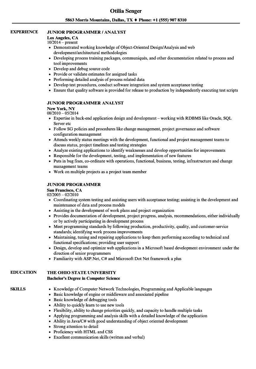 junior programmer resume sample