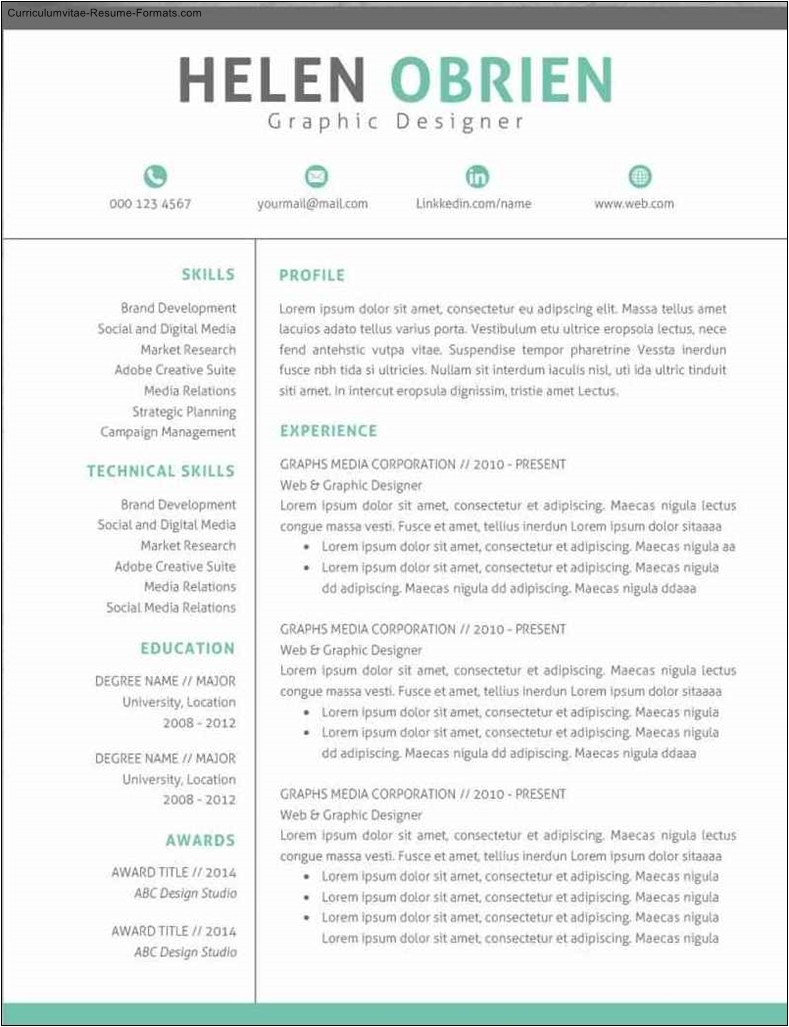 Modern Professional Resume Template Modern Professional Resume Templates Free Samples