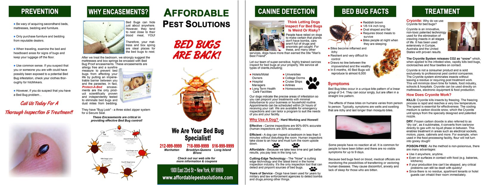 post bed bug flyer 104119