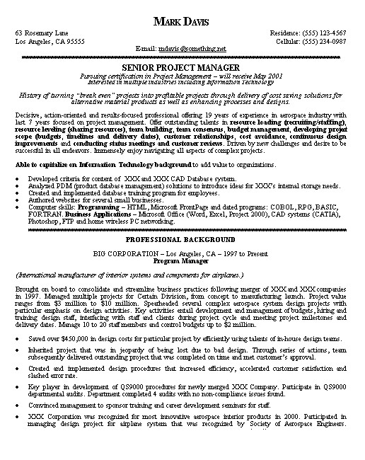 project manager resume example 2