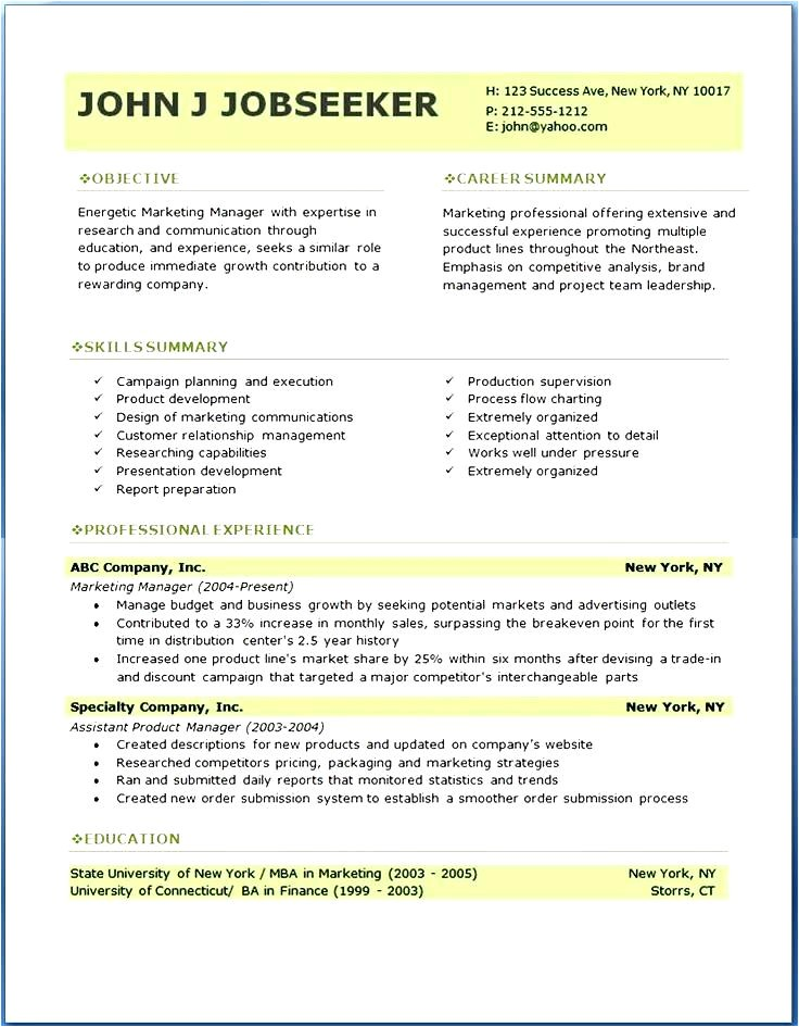 Professional Resume Template Examples Gallery Of Resume Curriculum Vitae Template
