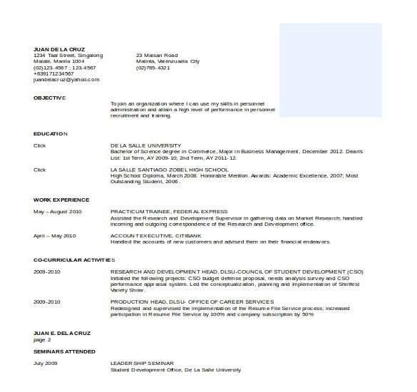 word professional resume
