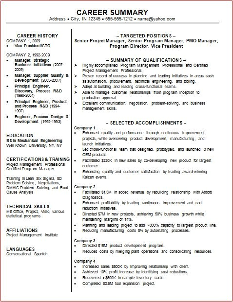 Professional Summary Resume Sample 9 Professional Summary Examples Samplebusinessresume Com