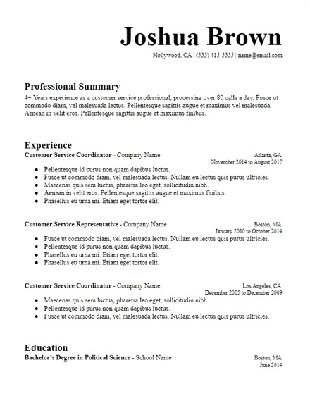 Professional Summary Resume Sample Long Professional Summary Resume Template Hirepowers Net