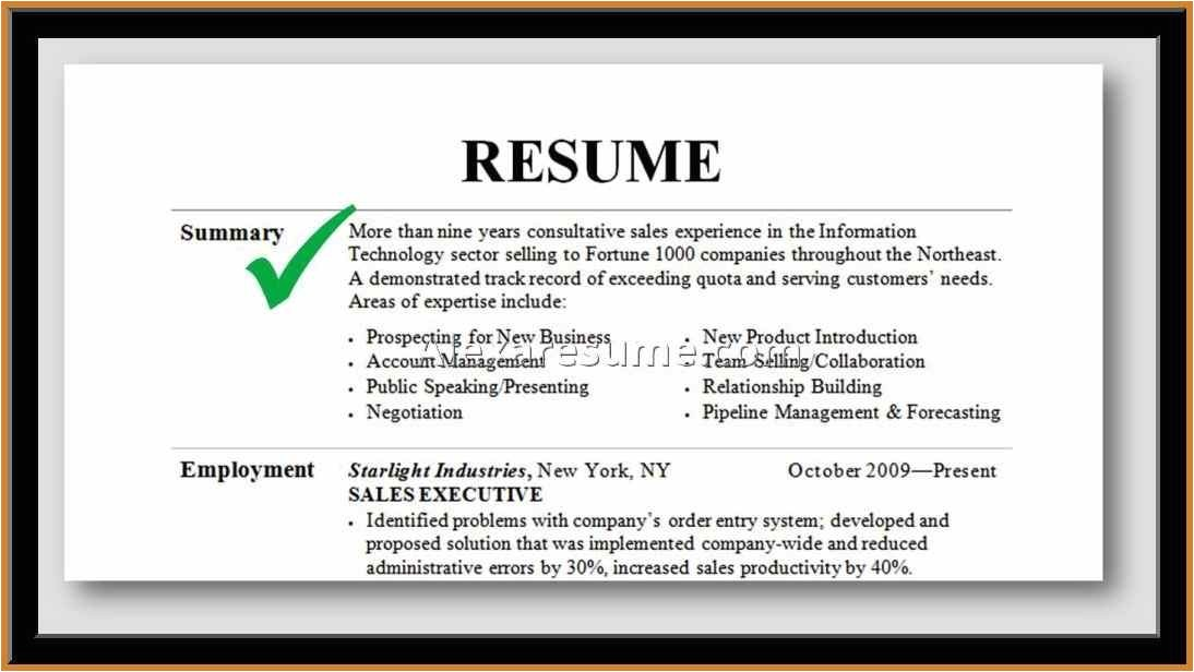 Professional Summary Resume Sample Professional Summary Resume Examples Example Of Resumes