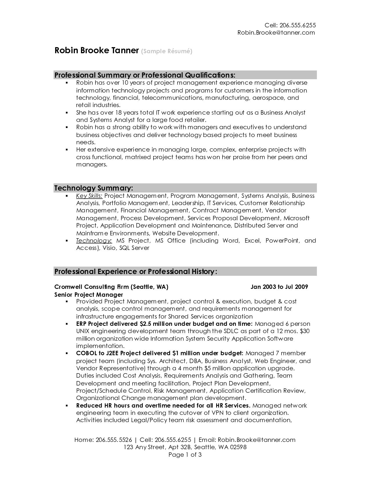 Professional Summary Resume Sample Professional Summary Resume Examples Professional Resume