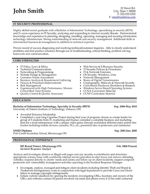 resume sample professional