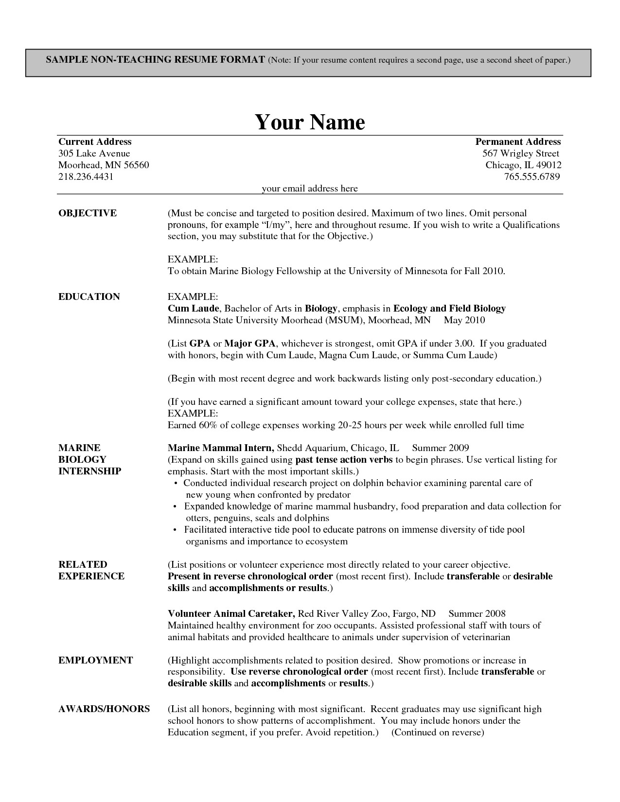 resume builder template for teachers