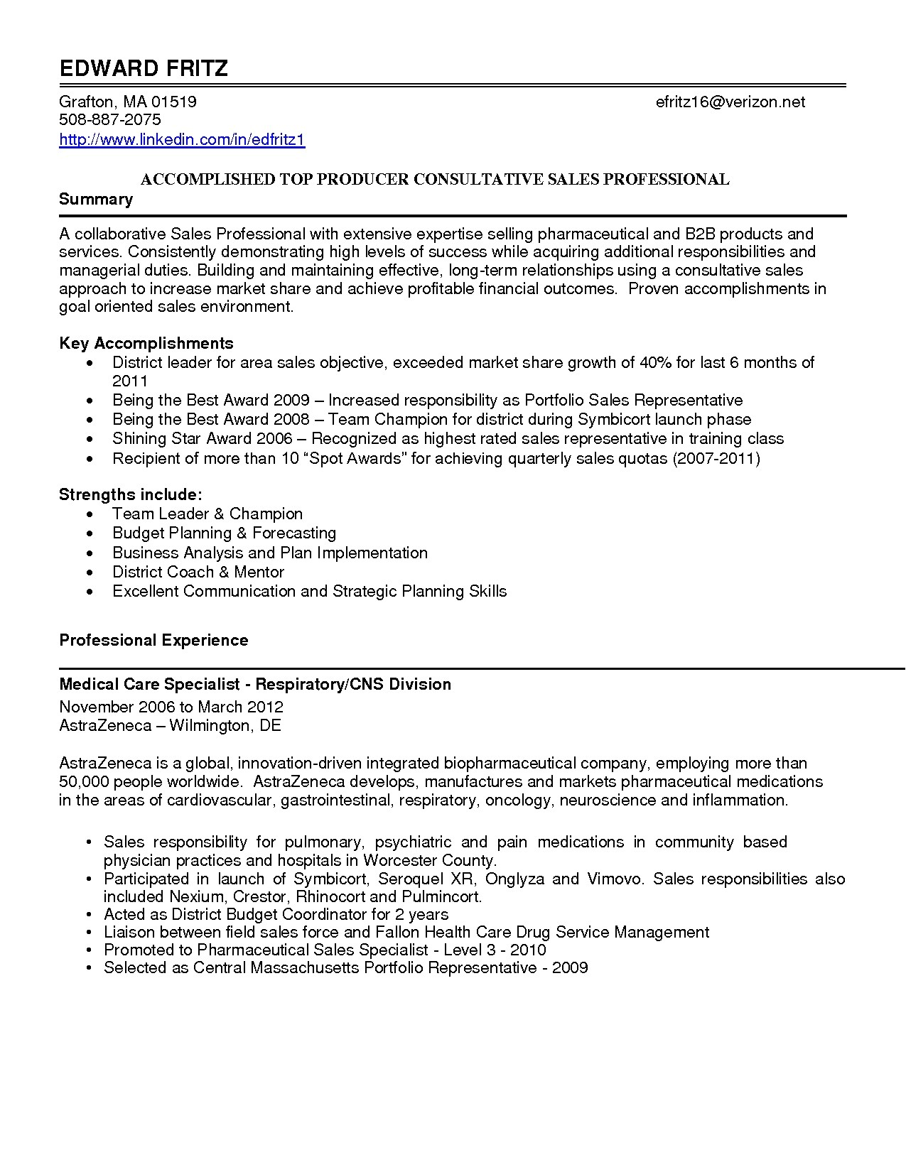 Resume Summary Samples for It Professionals 13 Best Of Resume Summary Samples for It Professionals