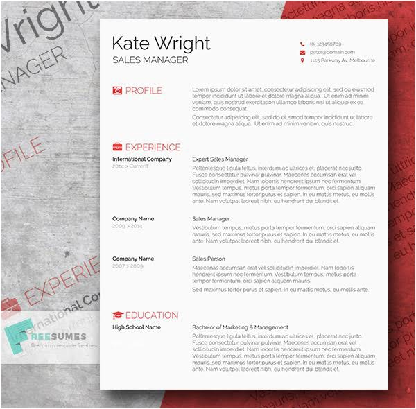 Resume Template Indesign Free 85 Free Cv Indesign Resume Templates In Ai HTML Psd