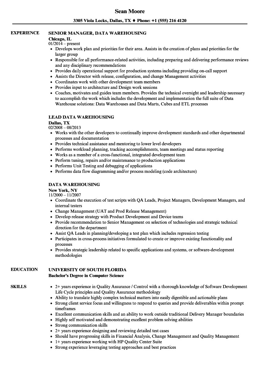 Sample Resume for Data Warehouse Analyst Data Warehouse Analyst Curriculum Vitae Google Verbs
