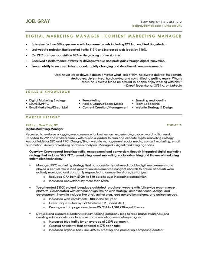 Sample Resume for Digital Marketing Manager Digital Marketing Manager Resume the Letter Sample