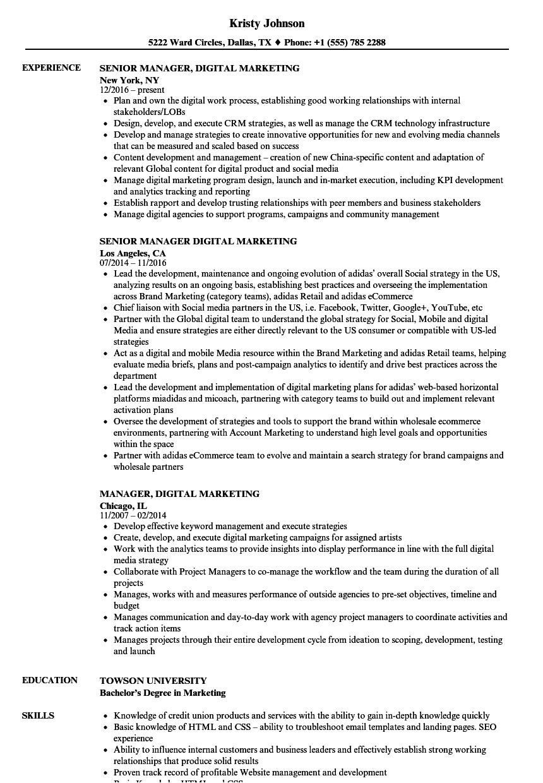 Sample Resume for Digital Marketing Manager Manager Digital Marketing Resume Samples Velvet Jobs