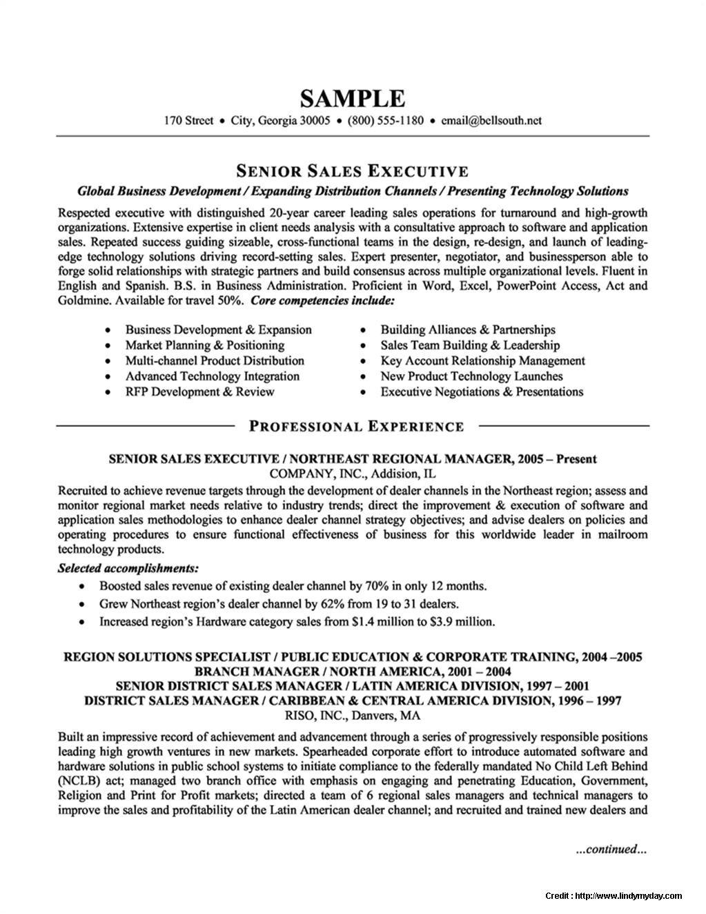sample resume format for experienced sales executive