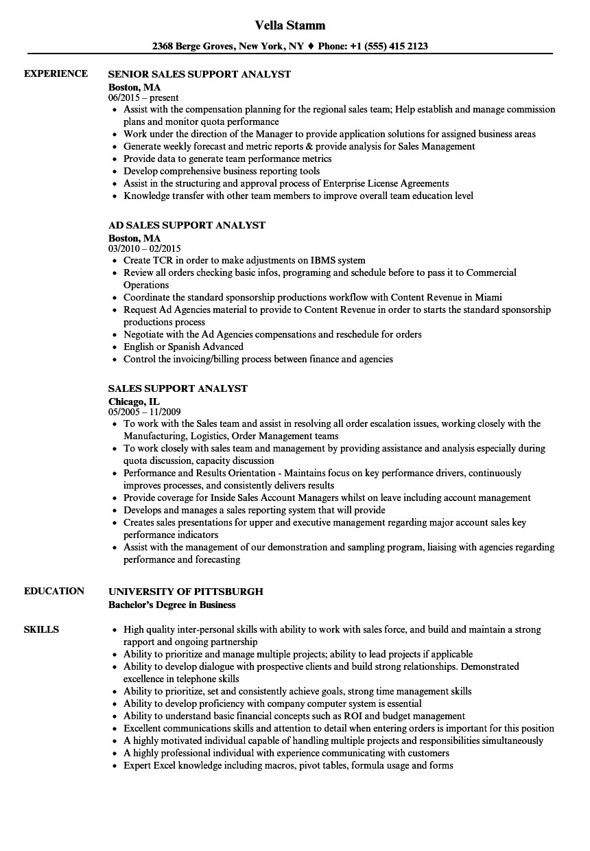 sales support analyst resume sample