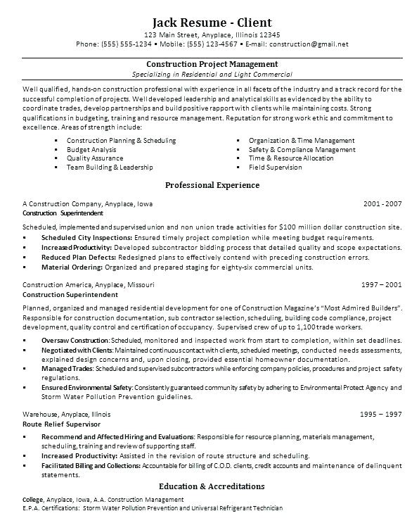 sample resume for project manager it software india