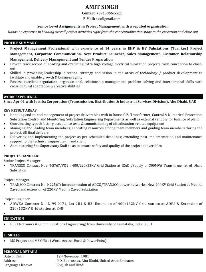 test lead resume sample india