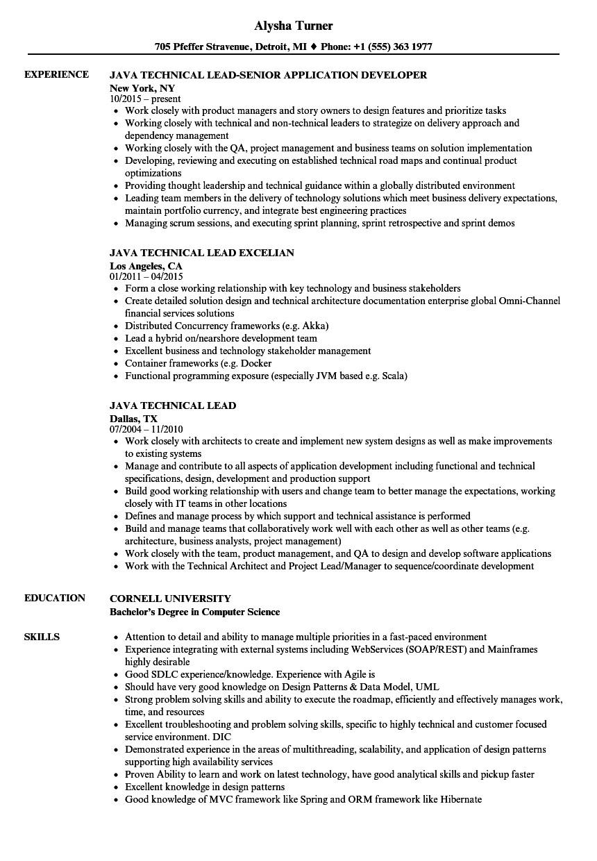 java technical lead resume sample