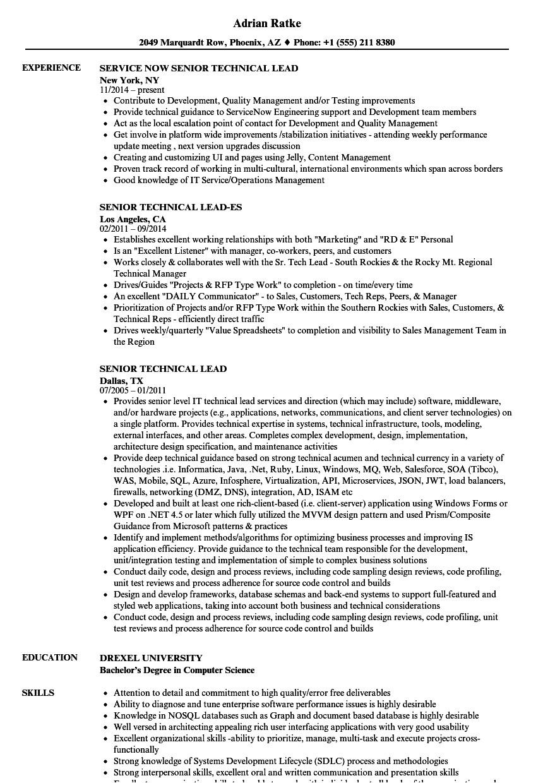 senior technical lead resume sample