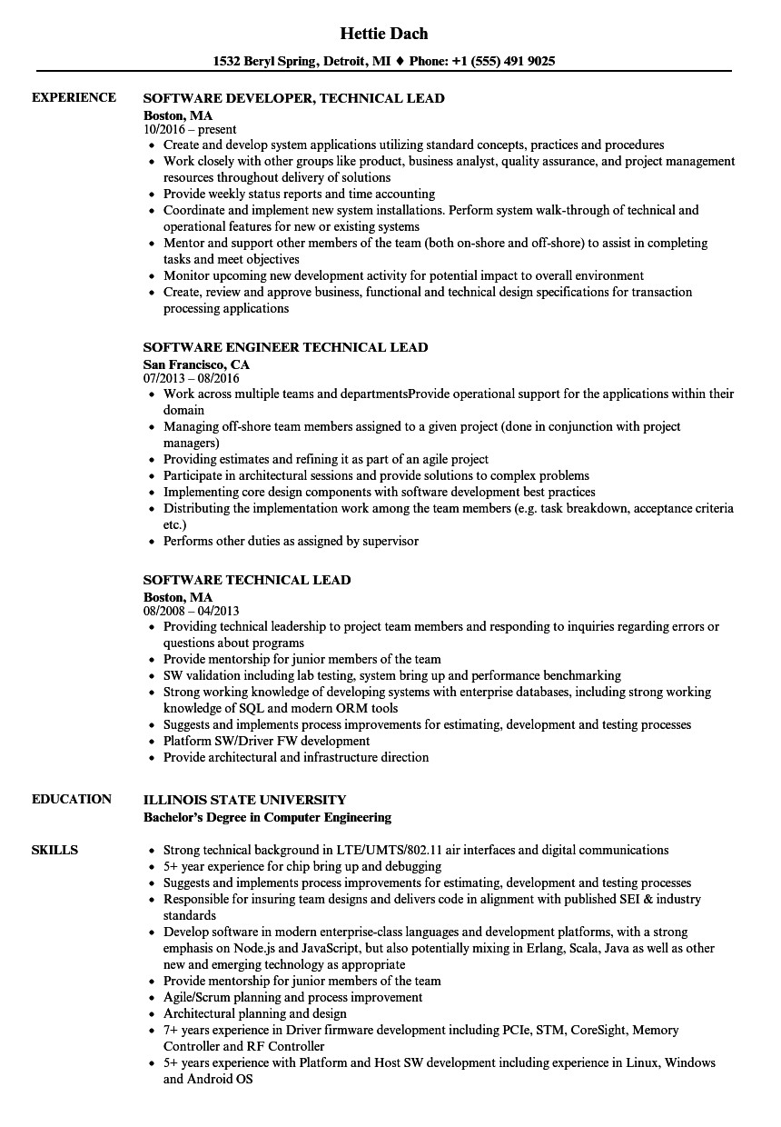 software technical lead resume sample
