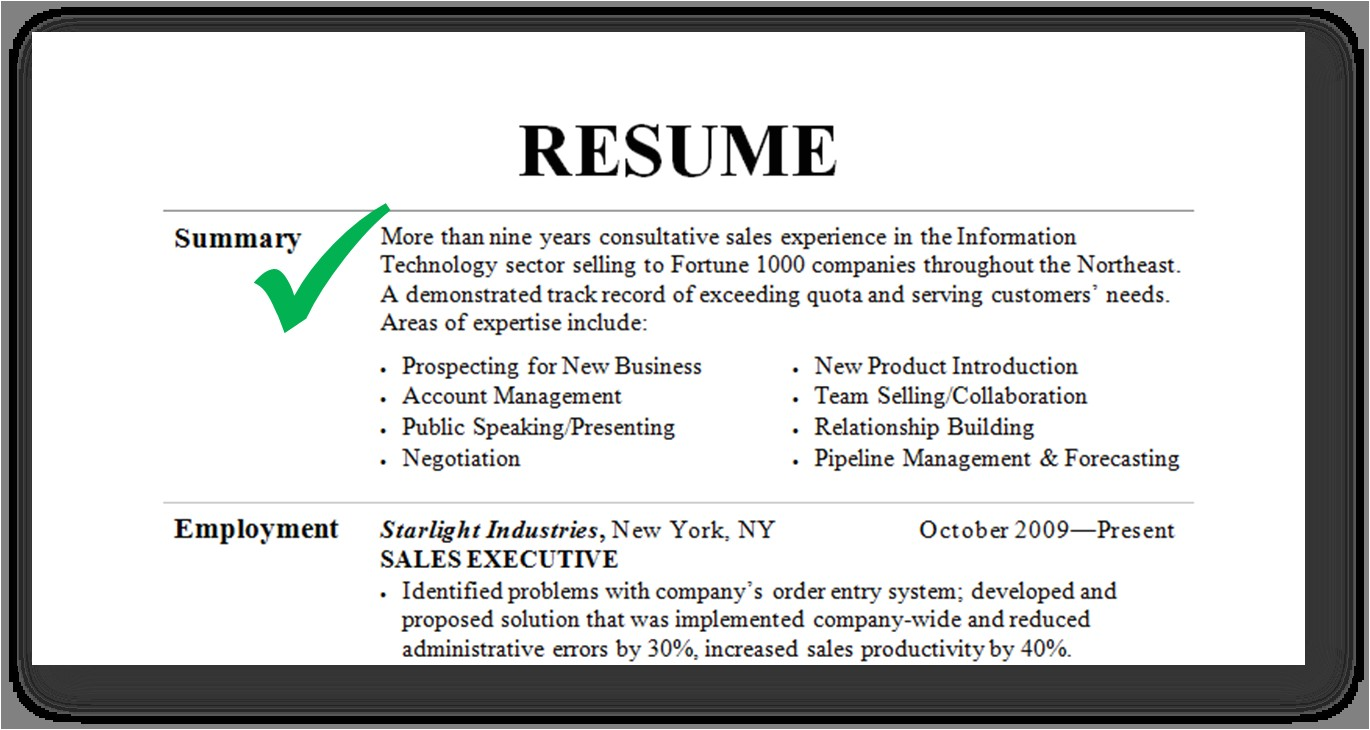Sample Resume Summary Resume Summary Examples