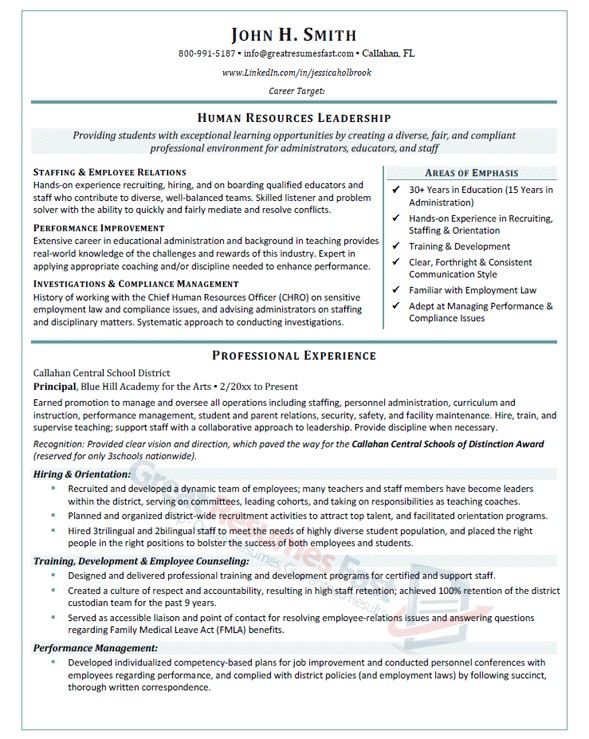 Samples Of Professional Resumes Executive Resume Samples Professional Resume Samples