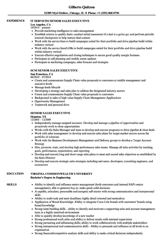 senior sales executive resume sample